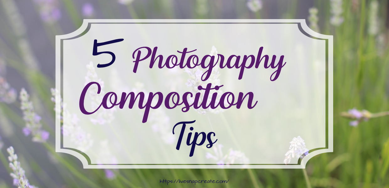 5 Photography Composition Tips