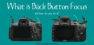 Back button focus