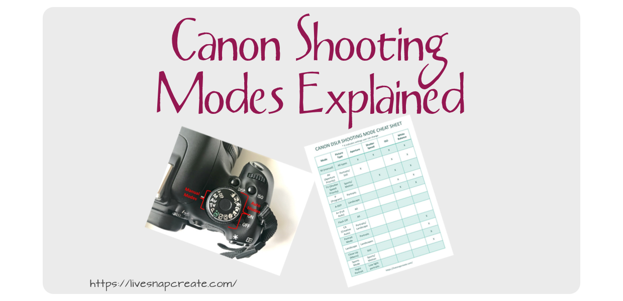 Understanding Canon DSLR Camera Modes