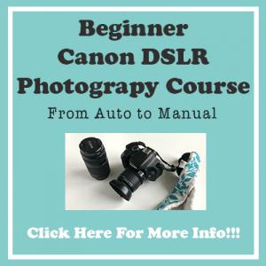 Beginner Canon DSLR Course