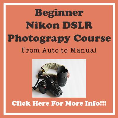 Beginner Nikon Camera Course